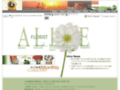 Taiwan Flowers-Welcome to Alice Florist Taipei-Taiwan send Flowers on line